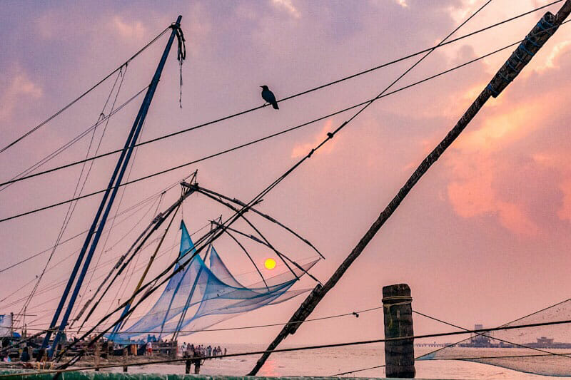 The Best Things to Do in Fort Kochi (Cochin), India - Brogan Abroad